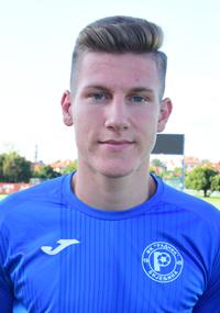 Faruk Gogić